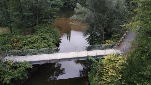 Rencontre-du-Lot-et-la-rivière-Riou-Mort.jpg