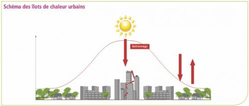 ilot chaleur urbain -schéma Invs.jpg