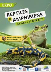 Reptiles et Amphibiens- Affiche-Expo 240117-170617.jpg