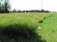 terre végétale conservée.jpg