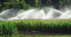 eau,agriculture,pesticides,