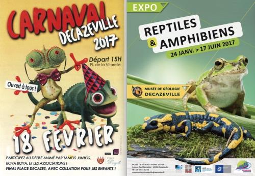 affiches dkz -amphibiens.jpg